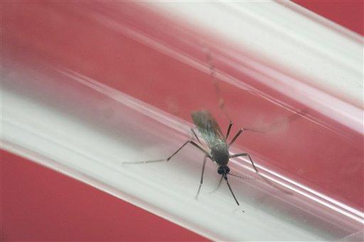 Confirman primer caso de Guillain-Barré causado por zika en México