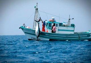 pesca-fondo-acuicola