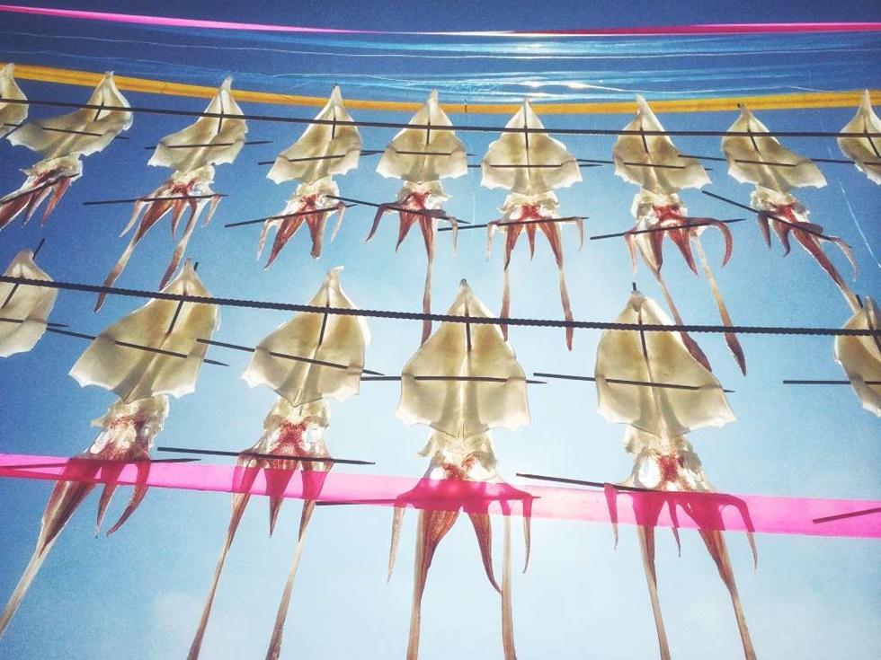 """SEGUNDO LUGAR, COMIDA """"Esta foto fue tomada en Japón en agosto de 2015, en la isla de Kyushu, en el condado de Saga, en un pequeño pueblo llamado 'Yobuko'. Este pueblo es famoso por el calamar. Los lugareños colgar el calamar fresco cerca de la playa para secar en el viento del mar. Cuando se camina por la orilla del mar, a menudo se puede ver el """"calamar volador"""", una vista muy interesante"""""""