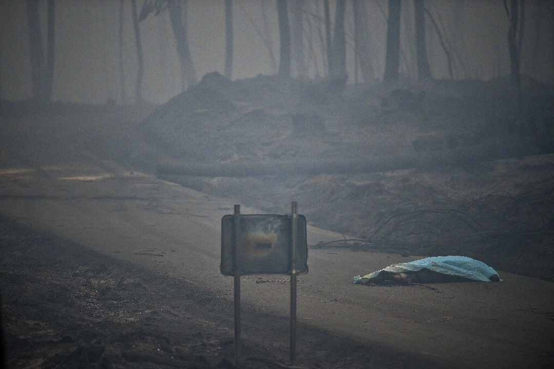 The dead body of a victim of a wildfire lies covered by a blanket on a road in Pedrogao, on June 18, 2017. A wildfire in central Portugal killed at least 57 people and injured 59 others, most of them burning to death in their cars, the government said on June 18, 2017. Several hundred firefighters and 160 vehicles were dispatched late on June 17 to tackle the blaze, which broke out in the afternoon in the municipality of Pedrogao Grande before spreading fast across several fronts. / AFP PHOTO / PATRICIA DE MELO MOREIRA
