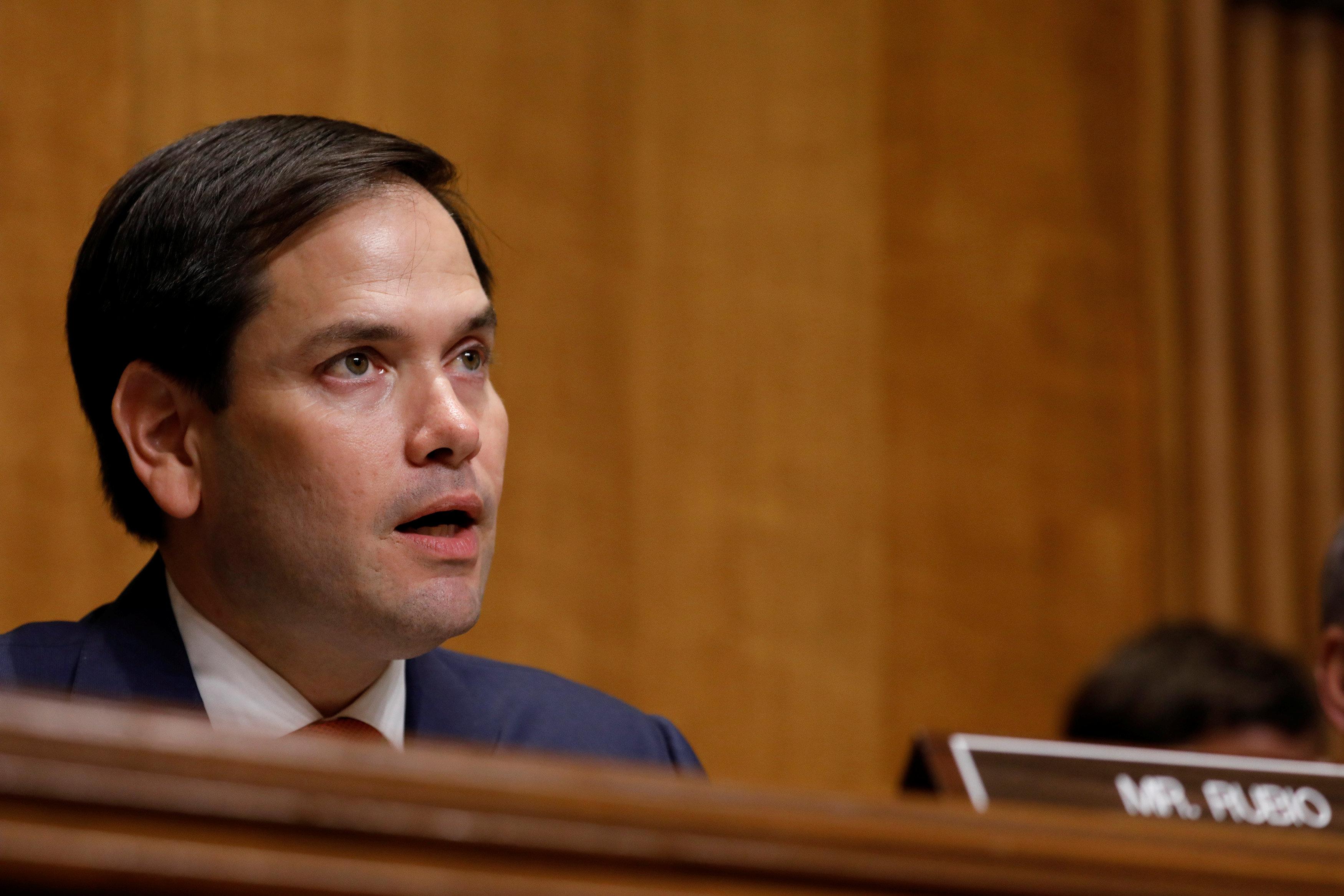 Senador Marco Rubio  REUTERS/Aaron P. Bernstein