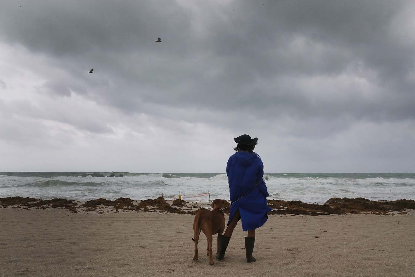 MIAMI BEACH, FL - SEPTEMBER 09: Monica Gutierrez and Tyson look out at the storm clouds and churning ocean as Hurricane Irma approaches on September 9, 2017 in Miami Beach, Florida. Florida is in the path of the Hurricane which may come ashore at category 4. Joe Raedle/Getty Images/AFP