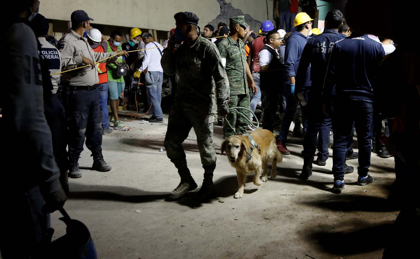 A rescue worker walks with a sniffer dog during a floodlit search for students at Enrique Rebsamen school in Mexico City, Mexico September 19, 2017. Picture taken on September 19, 2017REUTERS/Carlos Jasso