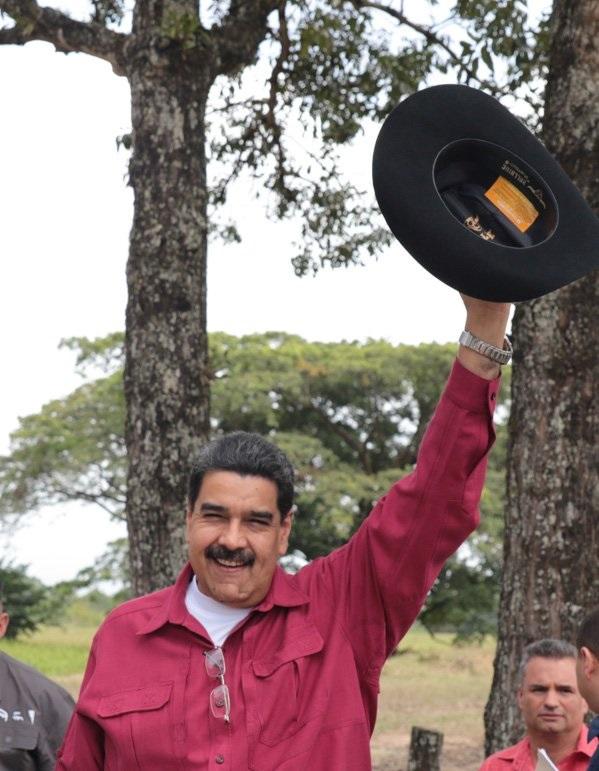 MaduroBullHide