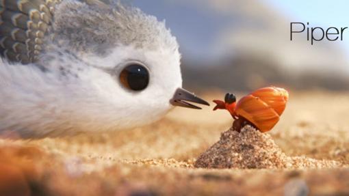Piper-corto-Pixar-abc-kCpG--510x287@abc