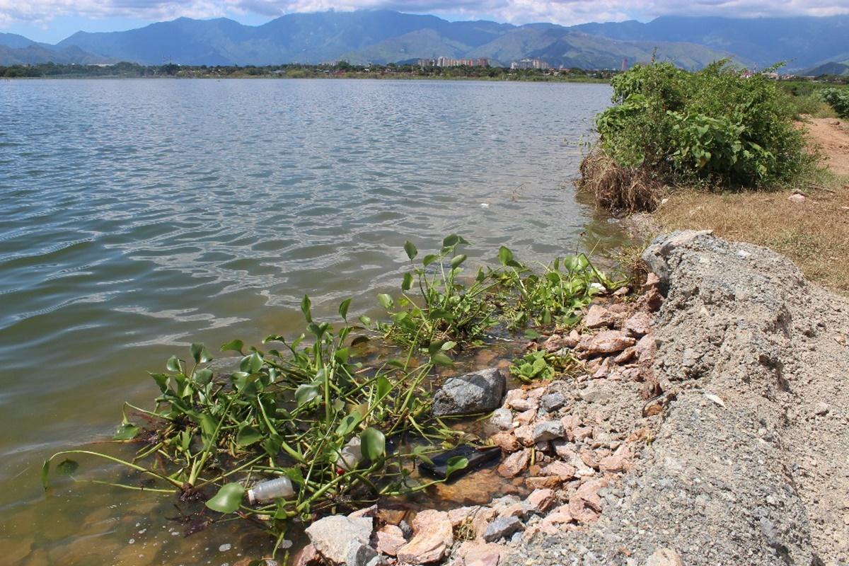 Borde del Lago de Valencia / Foto: Mildred Manrique, 800Noticias