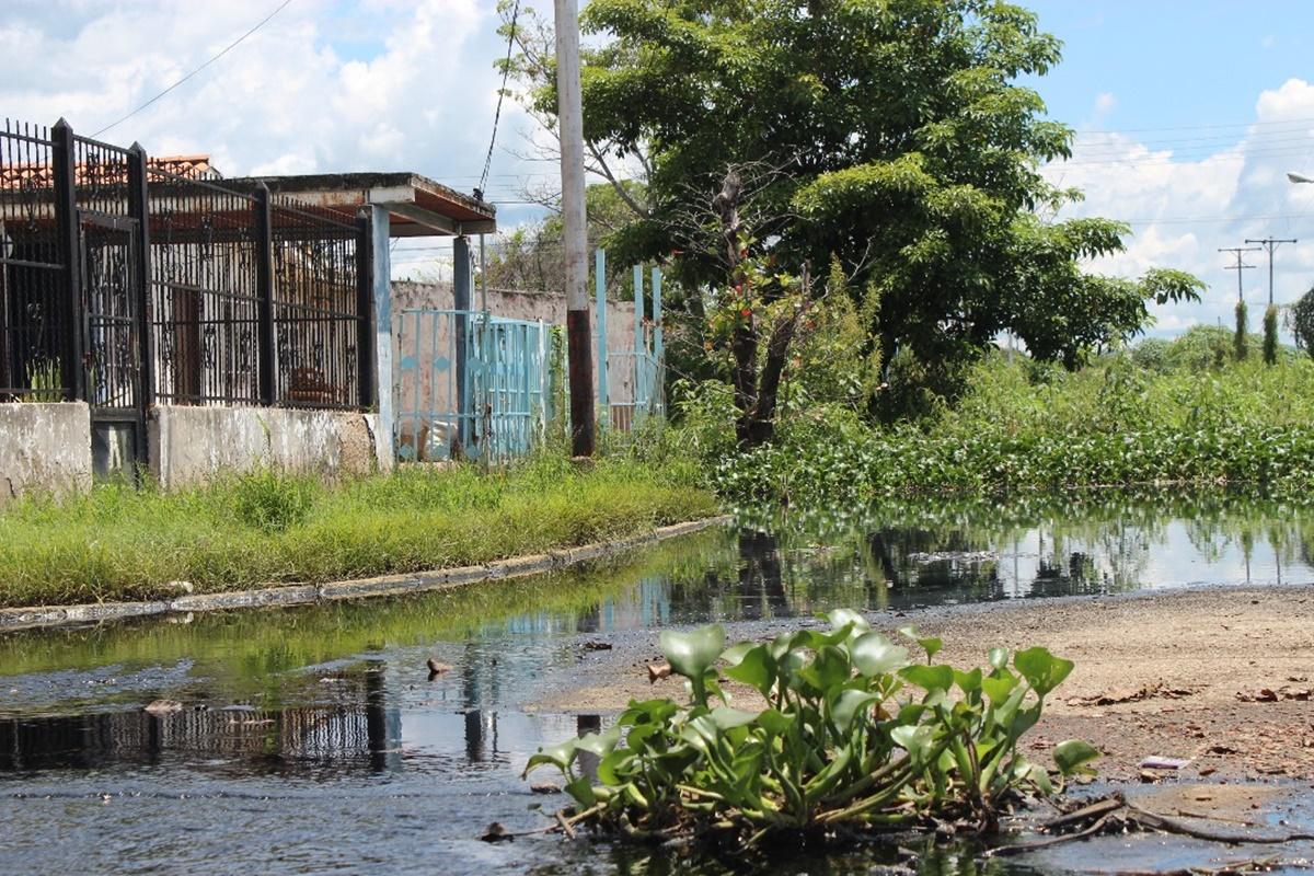 Casas afectadas en el sector Mata redonda/ Foto: Mildred Manrique, 800Noticias