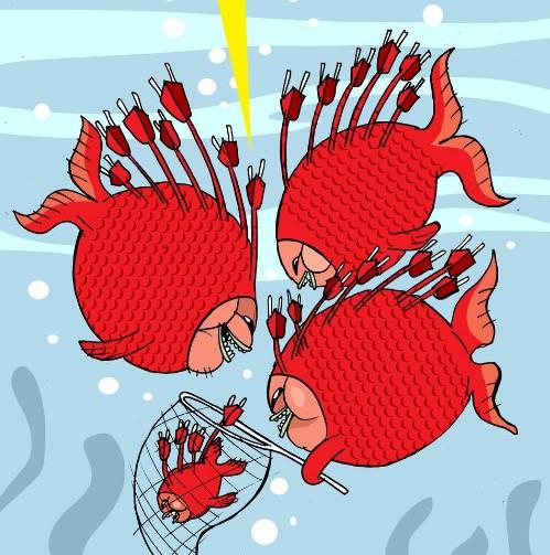 pez gordo