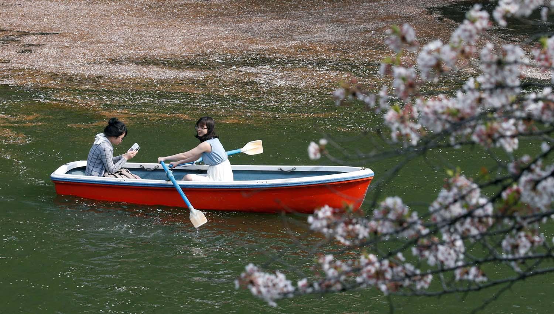 Los visitantes montan un bote en el foso de Chidorigafuchi cubierto con pétalos de flores de cerezo en Tokio, Japón, el 2 de abril de 2018. REUTERS / Toru Hanai
