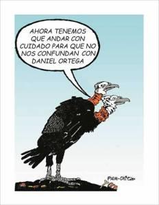 Caricaturas del domingo 13 de enero de 2013