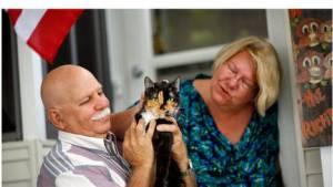 Esta gata recorrió más de 300 kilómetros para reencontrarse con sus dueños