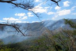 Incendio ha consumido 170 hectáreas del Parque Henri Pittier