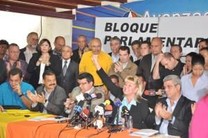 Diputados convocan a marcha el 23 de enero para defender la Constitución (Comunicado)