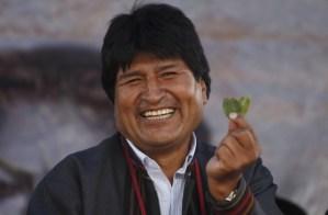 Morales está decidido a exportar coca