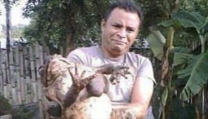 El descomunal abrazo del sapo (Foto)