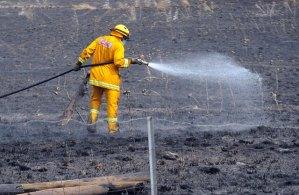 """Incendios forestales avanzan en Australia a un nivel de """"catástrofe"""" (Fotos)"""