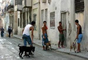 Patrick Symmes: Treinta días viviendo como un cubano
