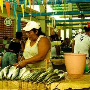 Frescura y diversidad del mar están en Mercado Los Cocos de Nueva Esparta