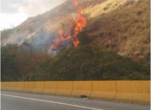 Otra vez se quema El Ávila (Fotos)