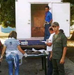 Militares retuvieron 1.550 ejemplares de pavón en Apure
