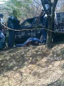 Asesinan de cinco disparos a estudiante frente al decanato de la UCV