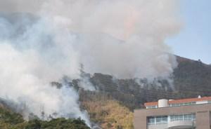 Incendio en El Ávila dejó dos bomberos lesionados