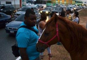 Hombre murió atropellado mientras cabalgaba un caballo en Valencia