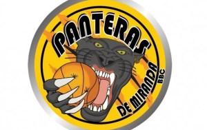 Panteras quitó invicto a Cocodrilos