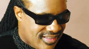 Stevie Wonder quiere que luthier español fabrique guitarras para ciegos