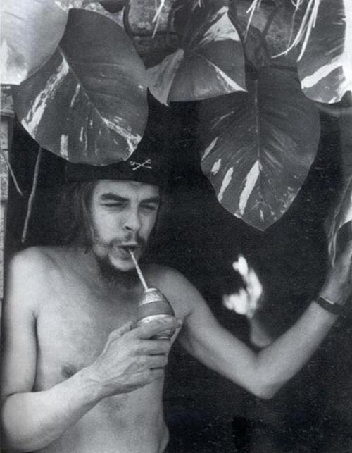 """Ché"" Guevara tomando su mate"