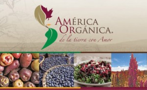 América Orgánica y Edgar Leal inician ciclo de cocina orgánica creativa