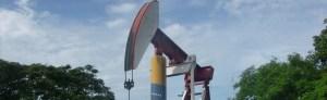 Petróleo venezolano cae a 98,80 dólares