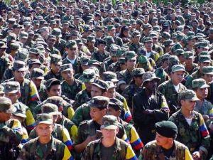 Farc cree que propuesta de Gobierno colombiano para referendo es asunto delicado