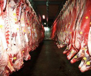 Exportaciones de carne brasileña a Venezuela aumentan 85,68 % en 2013