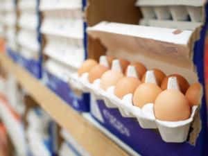 Precio de la caja de huevos va palo arriba