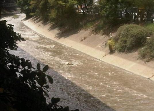 Rio Guaire_Cadaver