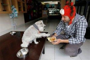 Podrás disfrutar de ésta exclusiva panadería para perros con sólo cruzar la frontera