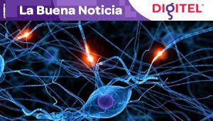 Investigadores descubren una terapia celular contra la demencia