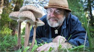 Este hombre cree que la clave para la supervivencia de la humanidad está en estos simples hongos (Video)