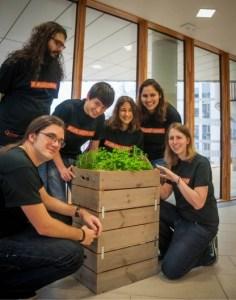 No es broma: Antes de colonizar Marte deberíamos lograr plantar lechugas