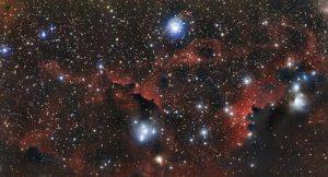 Captan la imagen de LDN 483, una nebulosa oscura que gesta miles de estrellas
