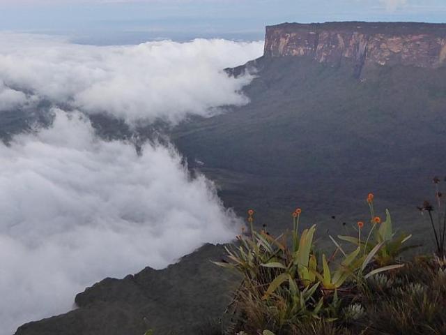El Roraima es una montaña sorprendente / Foto W.. Hatton