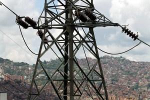 """De los creadores de """"la iguana y el clima"""", tenemos a las ratas y compañía que causan las fallas eléctricas (Fotos)"""