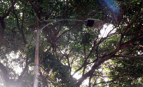 Foto el-carabobeno.com
