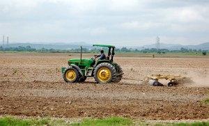Fedeagro registra caída de 30% en los rubros agropecuarios
