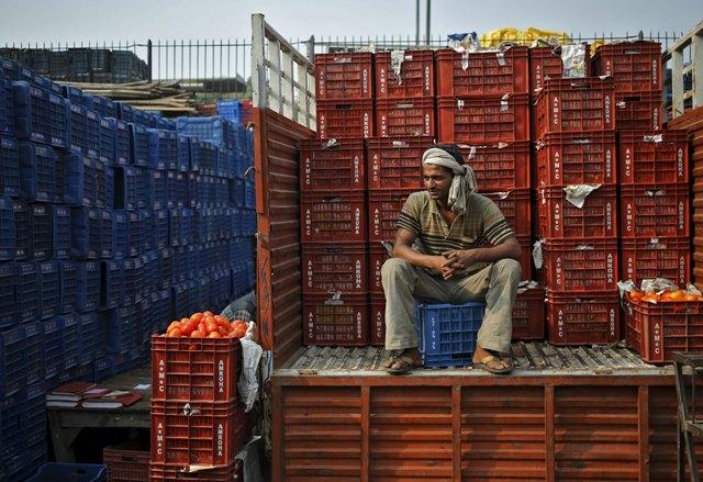Un trabajador se sienta en un camión cargado con cestas de tomates en un mercado de verduras al por mayor en Nueva Delhi, India, 14 de octubre de 2015. Los precios al por mayor de la India cayeron durante un mes consecutivo número 11 en septiembre, cayendo un 4,54 por ciento anual, principalmente en la parte posterior de caer los precios del petróleo, los datos del gobierno mostraron el miércoles. REUTERS / Anindito Mukherjee