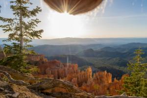 ¡Asco! Nutscaping… la moda de fotografiar bellos paisajes con los testículos colgando