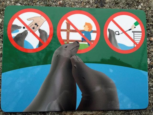 Fotografía facilitada por el Zoo de Viena de uno de los carteles en los que se prohibe el uso del paloselfi en los recintos de focas y pingüinos, para evitar así las molestias que sufren los animales cuando los visitantes usan ese mecanismo para tomar fotos de cerca. EFE