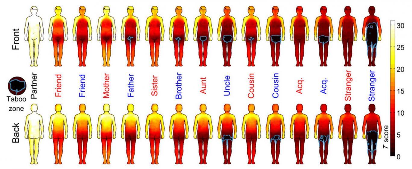 Mapa de calor del cuerpo humano muestra dónde aceptamos que nos ...