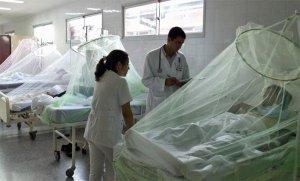 Se intensifican los casos de dengue y paludismo en Nueva Esparta